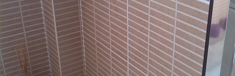 Reforma baño San Pedro